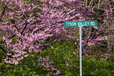 Tyson Research Center, Missouri