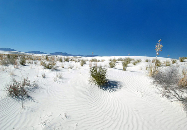 White Sands National Monument (1933) - rising from the heart of the Tularosa Basin - the 275 sq. mi. (443 sq. km) of the far northern Chihuahuan Desert, which protects a portion of the largest gypsum dunefield on Planet Earth - with the San Andres Mountains in the background - southern New Mexico (Land of Enchantment).  The Chihuahuan Desert is 1 of 4 deserts in the USA, and is also the largest in North America, extending about 1,200 mi (1,930 km) in length and encompassing around 175,000 mi²  (453,350 km²) of  from  NM southward into Mexico (San Luis Potosi, state), along the Sierra Madre Oriental (Eastern Mother Range) - this desert differs from the other US deserts by receiving more summer rain and having colder winters.