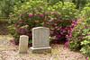 Cimetière de la famille Alston
