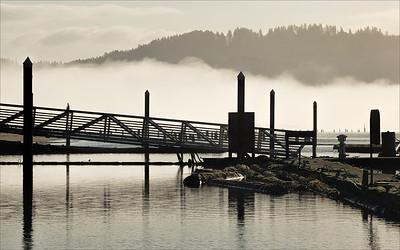 Fog over the Siuslaw River