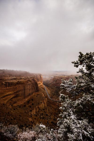 """Fruita Canyon View"""