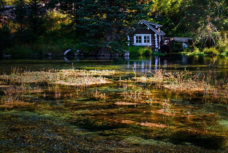 Big Springs, Island Park, Idaho.
