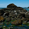 Tidal pools, Indian Beach, Ecola State Park, Oregon.