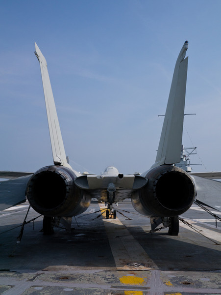 F-14 from the rear.