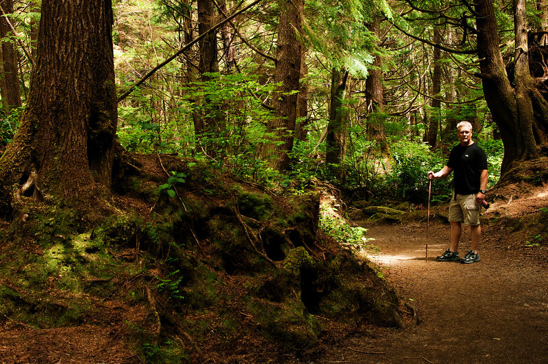 Olympia National Park, Washington.