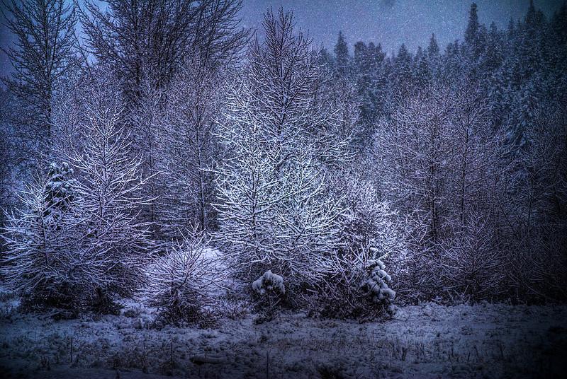 Snow scene.