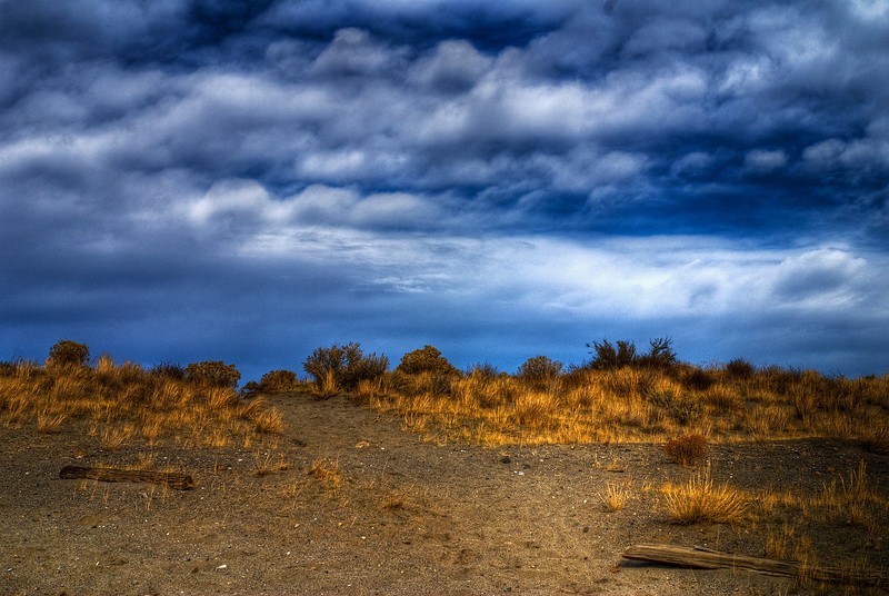 Sand and Sage, Richland Washington.