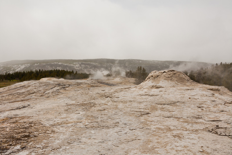 Lion Geyser Group