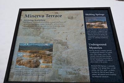 Minerva Terrace
