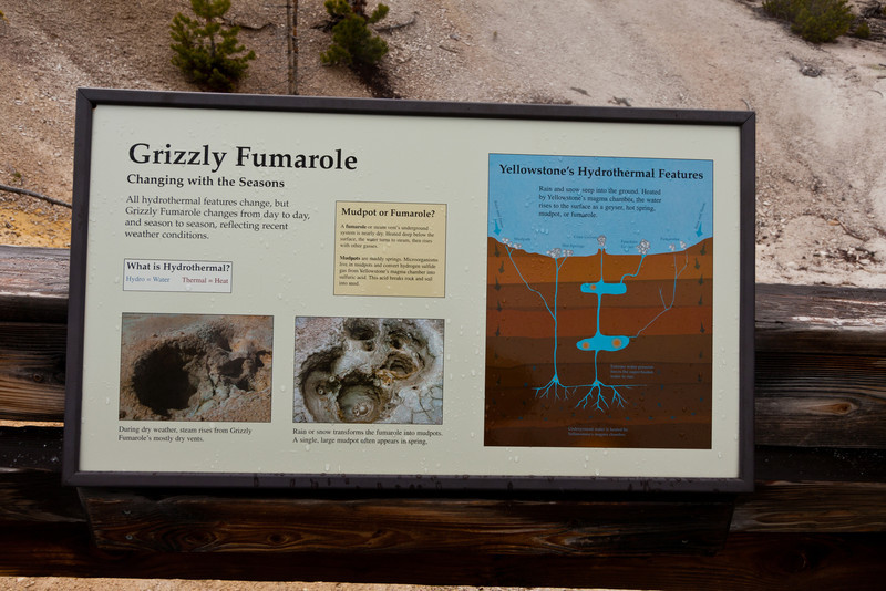 Grizzly Fumarole