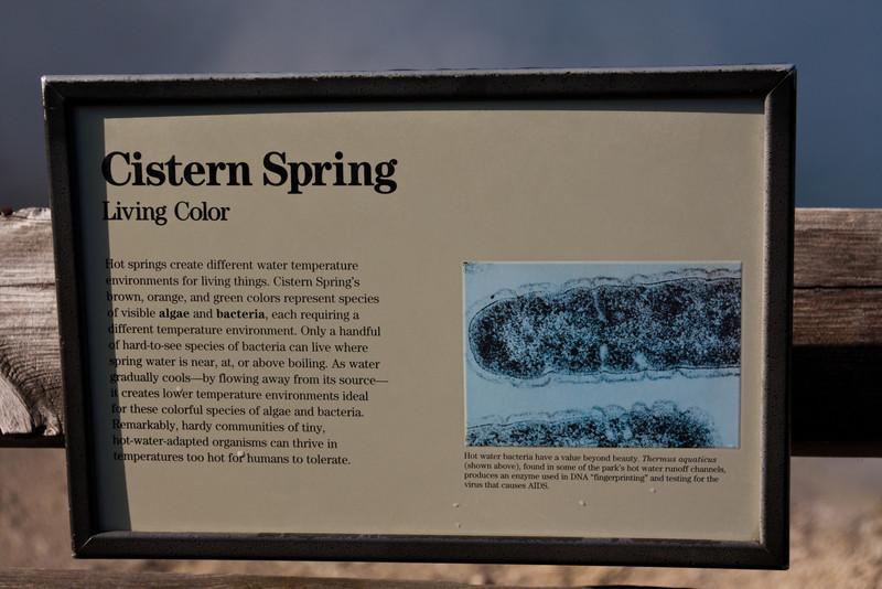 Cistern Spring