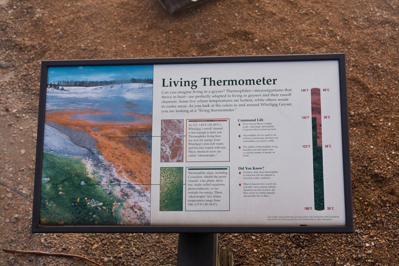 Living Thermometer