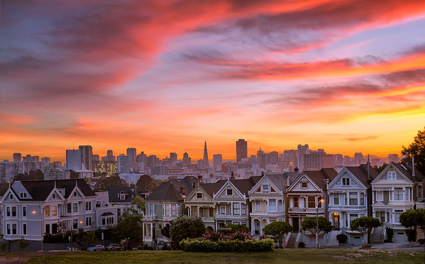 The Painted Ladies || San Francisco, CA