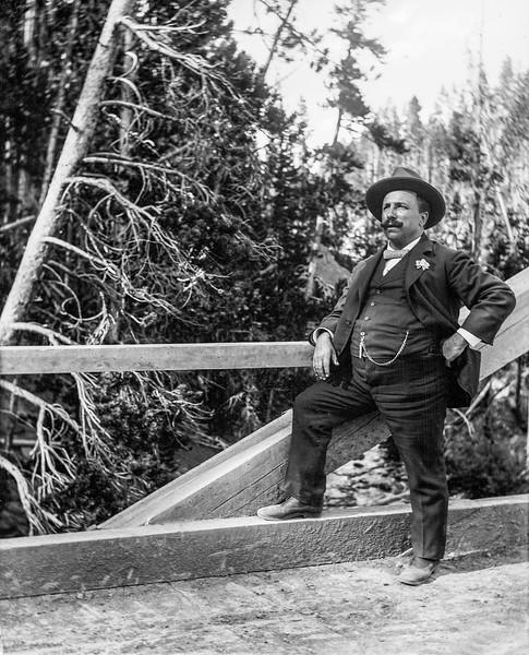Yellowstone - Reeves on bridge