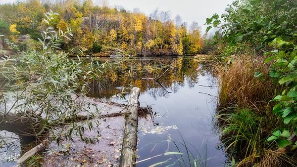 The Beaver Dam on the Bäveån, Uddevalla