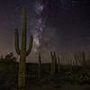 Saguaro and Milky Way, Saguaro National Park West
