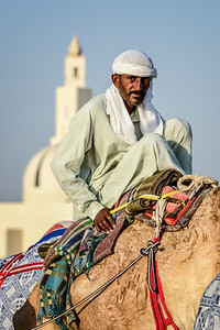 Camel herder with mosque, Dubai