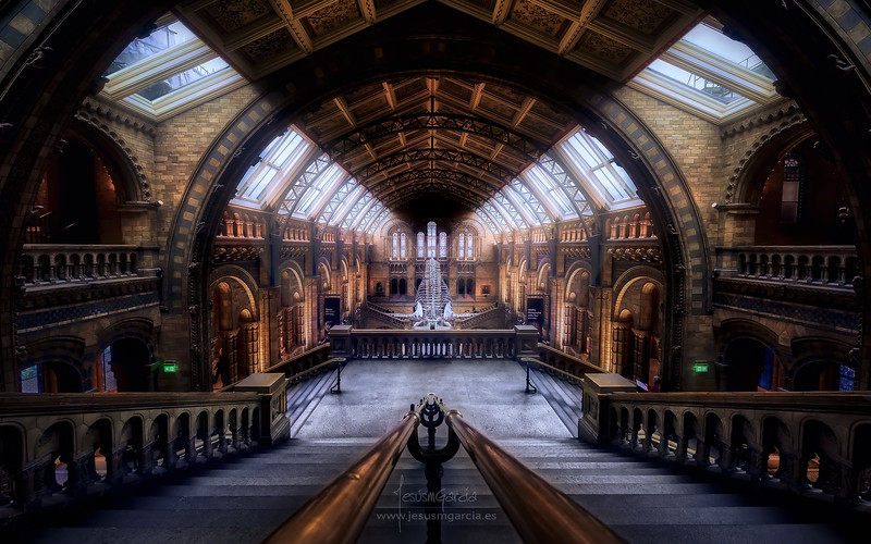 Natural History Museum - London - United Kingdom