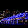Blue lights trellis at Christopher Columbus Park with Custom House