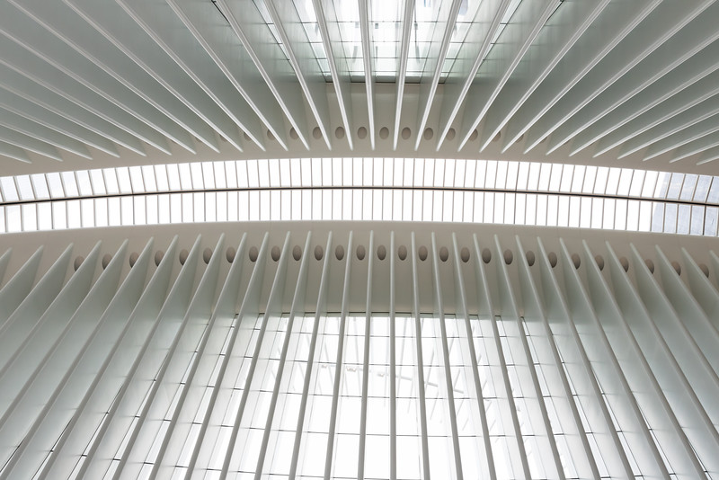 Skylights and window of the Oculus, Transpration Hub, Manhattan