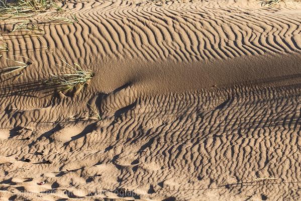 Sand dune texture