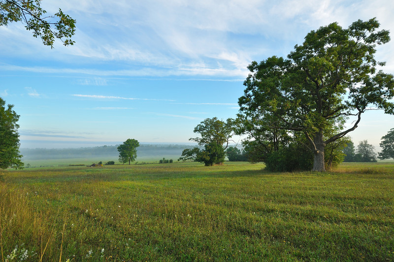 Nations Road on a foggy morning.  Nikon D5000 (September 2011).