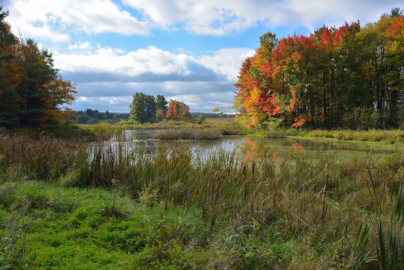 Along the road to Portageville.  Nikon D600 (October 2012).