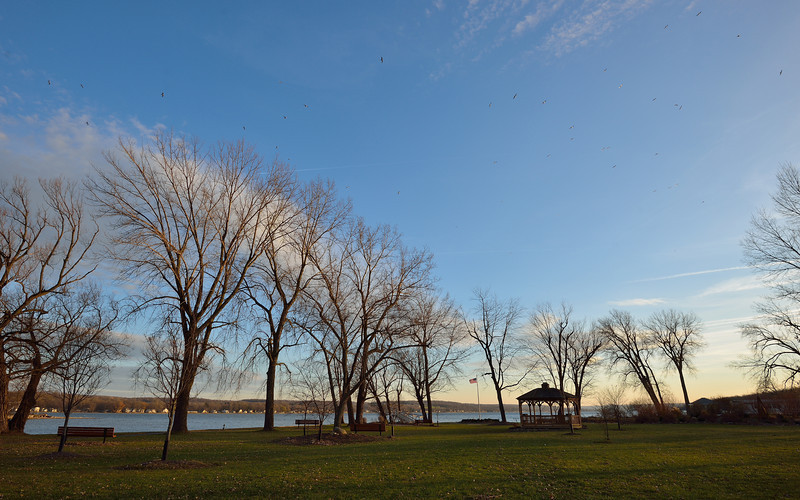 Seagulls swirl over the north end of Conesus Lake at sunset.  Nikon D600 (November 2012).