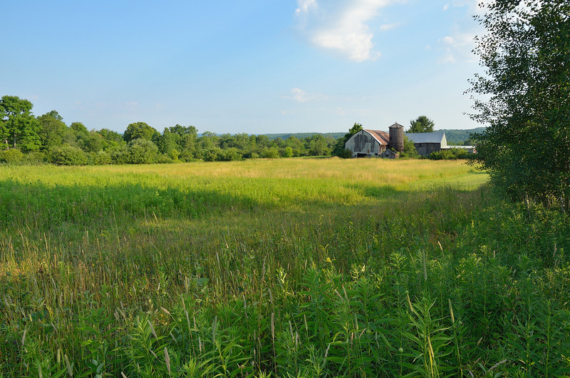 Many of the old farms are abandoned or have been combined with others.  Nikon D5100 (July 2012).