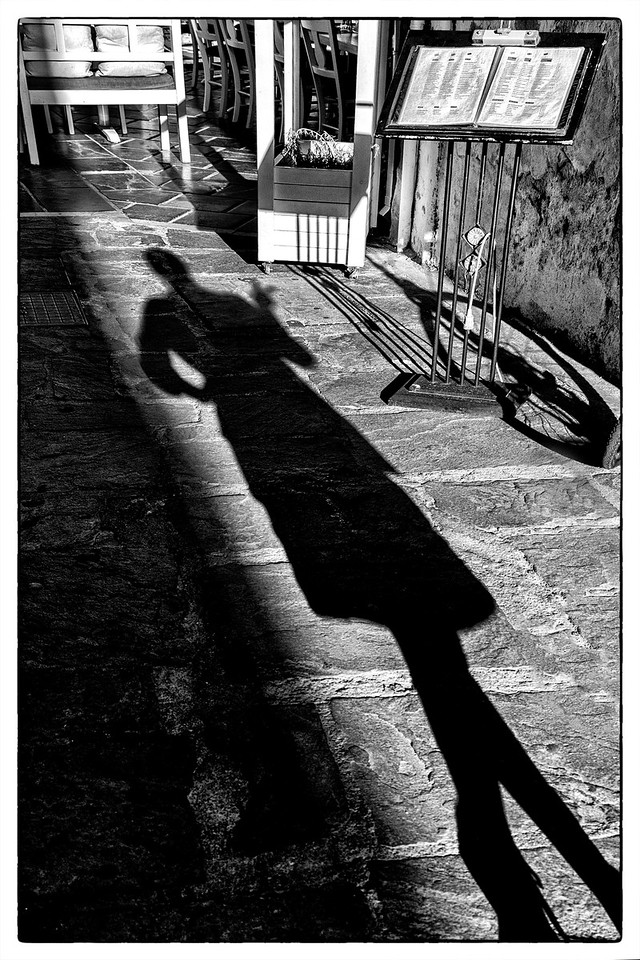 Friendly Shadow in the Alley