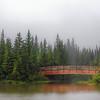Weaselhead Bridge