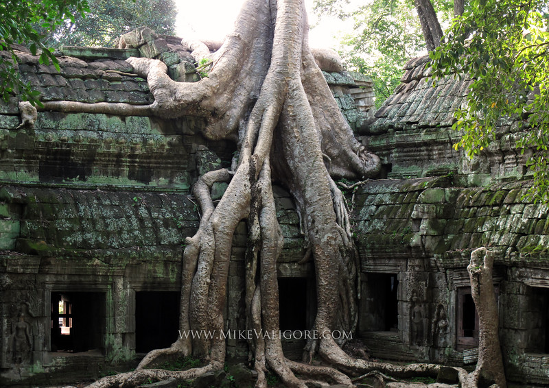"Ta Prohm<br /> <br /> Ta Prohm is one of the most famous temples in Angkor Wat.  It has been used in several Hollywood movies including ""Tomb Raider"" and ""Indiana Jones."""