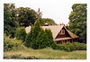 Photo showing extreme overgrowth around the house - July 1977