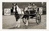 Postcard of Margaret & Harry in buggy pulled by 'Pride' - Fall 1949