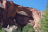 Kolob Arch - the 2nd longest natural arch on Planet Earth - it is composed of Navajo sandstone, and is created by vertical joint expansion, wall collapse, and erosion - with the Ponderosa Pines growing below and the Pinyon Pines flourishing along the upper span of the natural arch - Zion National Park
