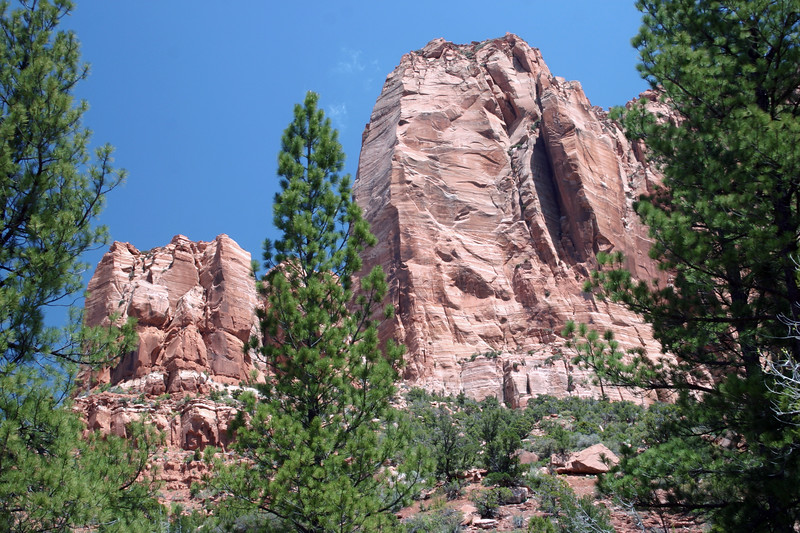 Beyond the Ponderosa Pine - to the southwestern tip of Gregory Butte - along the La Verkin Creek Trail - Zion National Park