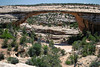 Eye-level with the Owachomo Bridge - south view under the bridge, to the confluence of the Tuwa Canyon (foreground) with the Armstrong Canyon (beyond) - Natural Bridges National Monument