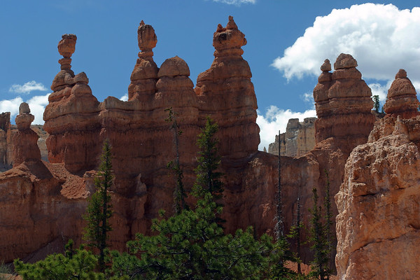Limestone Hoodoos, along the Peekaboo Loop Trail - Bryce Canyon National Park