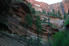 Below the eroded sandstone of Kolob Arch -  - Zion National Park