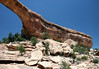 From the sedimentary sandstone ledge, along the Tuwa Canyon, dotted with Pinyon Pine and Utah Juniper - up to the eastern span, of the Owachomo Bridge - under the naked midday Utah sky - Natural Bridges National Monument