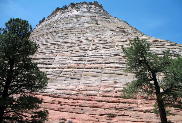 Checkerboard Mesa - the horizontal lines are caused by crossbedding (a sedimentary structure where the horizontal units are internally composed of inclined layers - that formed millions of years ago during deposition on the inclined surfaces of bedforms, such as: low plane beds and dunes - and indicates that the depositional environment contained a flowing fluid) - the vertical lines formed because of the contraction and expansion of the sandstone.