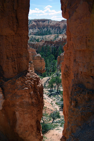 From between the limestone hoodoos - into Bryce Canyon - Bryce Canyon National Park