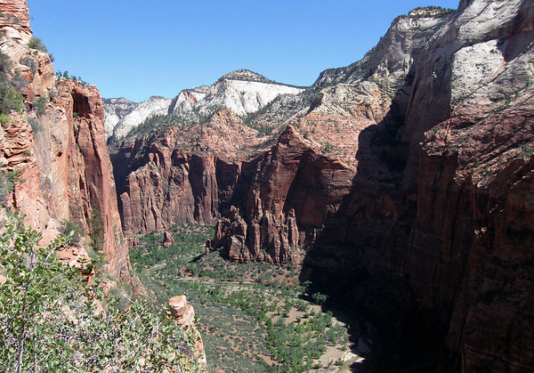From along the Angels Landing Trail - northward up the Zion Canyon - to the Temple of Sinawava - with Mystery Mountain. beyond and above - Zion National Park