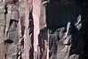 4 Climbers on the sheer sedimentary sandstone wall, along Zion Canyon - Zion National Park