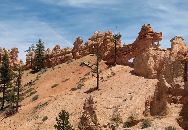 Along the Mossy Cave Trail - Bryce Canyon National Oark
