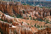 Fins and hoodoos of the Queen's Garden - Bryce Canyon National Park