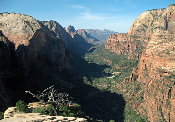 From the summit of Angels Landing - around 1,500 ft. (457 m) down, to the partially shaded Zion Canyon - Zion National Park