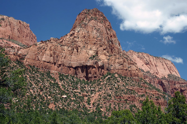 Along the southern slopes of Gregory Butte, composed of sedimentary Navajo sandstone - from the La Verkin Creek Trail (towards the Holob Arch) - Zion National Park