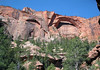 Kolob Arch - measuring 287 ft. (88 m) long, 105 ft. (32 m) tall, 35 ft. (11 m) wide, and 44 ft. (13 m) of separation - with the northeastern tip of Gregory Butte beyond and the Ponderosa Pines below - Zion National Park