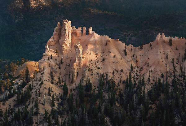 Day's final sunlight upon the limestone fins and hoodoos - Bryce Canyon National Park